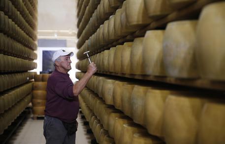 Dazi:Coldiretti,in 7 giorni +220% acquisti Parmigiano in Usa